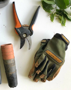 Bambus Anbau Pflege - Ausrüstung